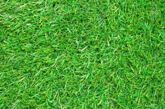 Topturf Fescue Artificial Grass Price Philippines