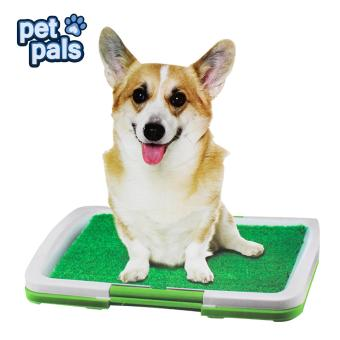Puppy Potty Trainer Indoor Price Philippines