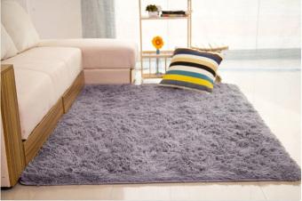 Shaggy Anti-skid Carpets Rugs Floor Mat/Cover 80*120cm Grey ...