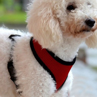 Soft Mesh Dog Harness Pet Puppy Cat Clothing Vest Red S - 3