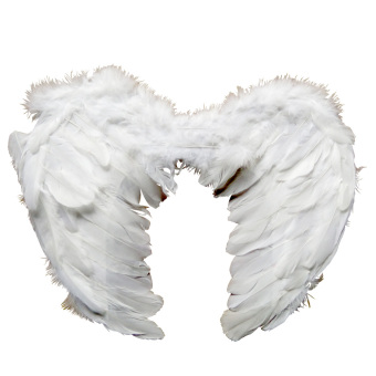 Angel Wings 80 x 50 (A)