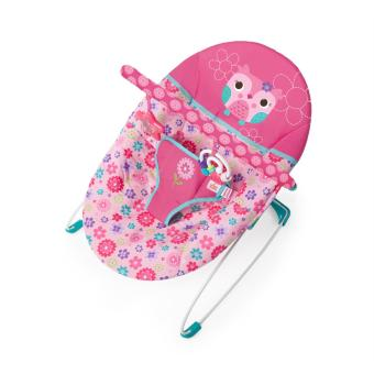 Harga Bright Starts Happy Flowers Bouncer