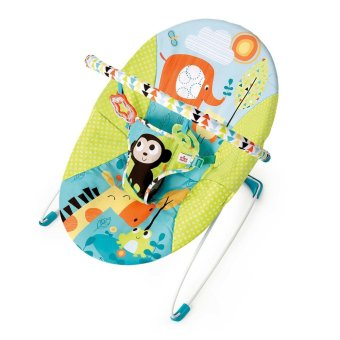 Harga Bright Starts Pattern Friends Bouncer