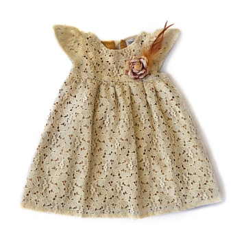 Happy Celine Harper Lace Dress Price Philippines