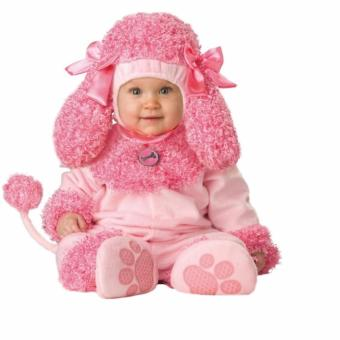 Harga Incharacter Costume - Poodle for 12-18 Months Old
