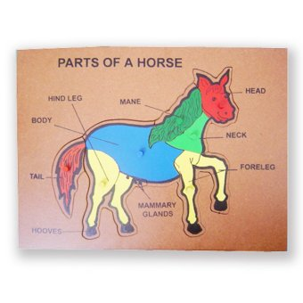 Tahanang Walang Hagdanan Parts of a Horse (Multicolor)