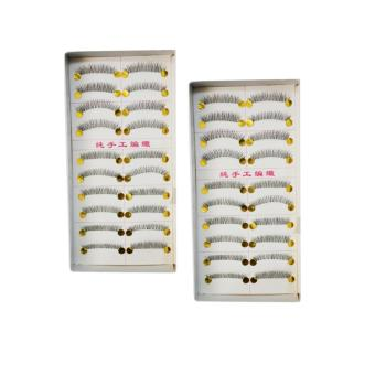 10 Pairs Taiwan Natural Eye Lashes Extension Long False Eyelashes(Set of 2)