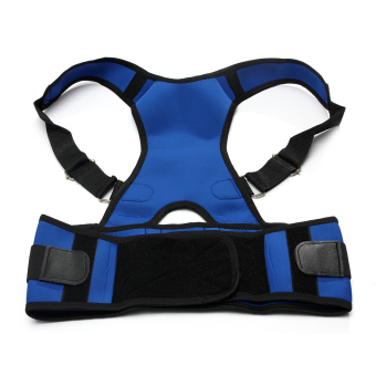 Adjustable Posture Back Lumbar Support Corrector Brace Shoulder Band Belt Blue M Comfortable Price Philippines