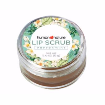 Human Nature Lip Scrub 12g Price Philippines