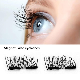 leegoal False Eyelashes Natural Eye Lashes Extension - 4 Pcs/1 No Glue 3D Double Magnetic , Black - intl