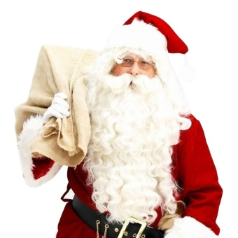 Santa Claus Wig + Beard Set Costume Accessory Adult Christmas Fancy Dress - intl