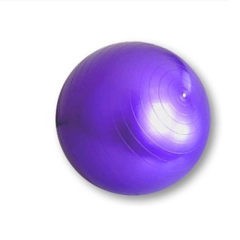 King Lion Gym Ball (Purple)