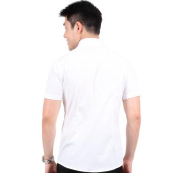 Attraxion Dean Embroidered Pattern Polo for Men (White) - 3