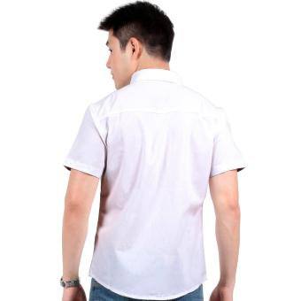 Attraxion Laurence Floral Placket Polo for Men (White) - 3