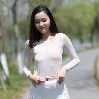 Gauze transparent female slim fit long-sleeved Top base shirt (Black-ice silk-short-sleeved)