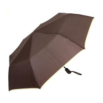 London Fashion SPhil Plain Windproof Automatic Compact Umbrella (Brown)