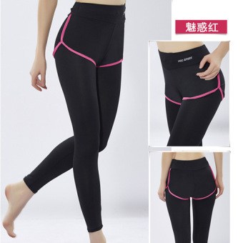 Plus-sized breathable quick-drying fitness pants athletic pants (Rose edge)