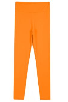 Sunweb Candy Color Women Fitness Sport Training Running Pants ( Orange )