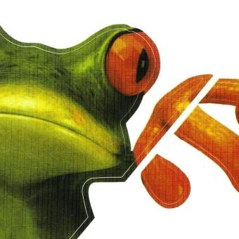 3D Peep Frog Funny Car Stickers Truck Window Decal Graphics Sticker - intl - 5