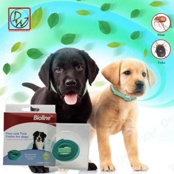Bioline Dog Collar Flea and Tick Collar for Dogs (Green)