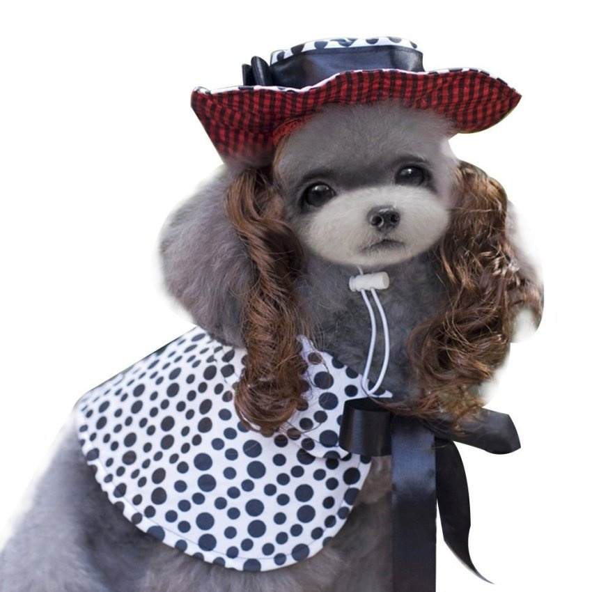 Philippines | Costume for Dogs Halloween Costumes Christmas Outfits ...