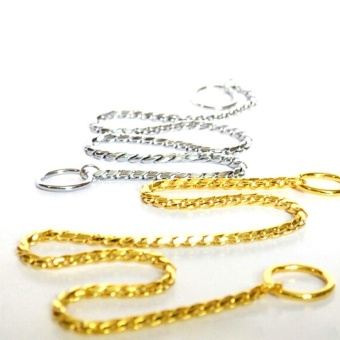 Pet Dog Training Collar Metal P Leash Leads Golden Silver Dog ChokeChain Snake - Gold 5mm*65cm - intl - 2