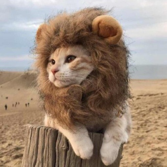 QJQ Lion Mane Wig for Dog and Cat Costume Pet Adjustable Washable Comfortable Fancy Lion Hair Dog Clothes Dress for Halloween Christmas Easter Festival Party Activity - intl
